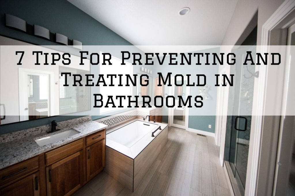 2021-02-23 Brush And Color Eco Painting Austin TX Preventing Treating Mold Bathrooms